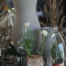 cement vase, cloches, topiary plants, birch vase