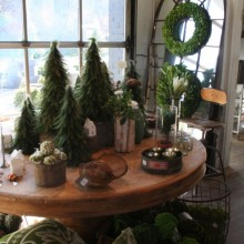 feather trees, preserved boxwood wreaths, cattail balls